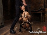 Kira Noir Disciplined to Fist Her Own A-hole!